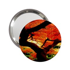 Maple Tree Nice 2 25  Handbag Mirrors
