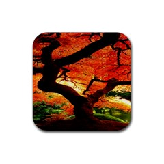 Maple Tree Nice Rubber Square Coaster (4 Pack)