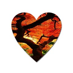 Maple Tree Nice Heart Magnet by BangZart