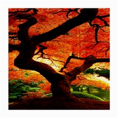 Maple Tree Nice Medium Glasses Cloth