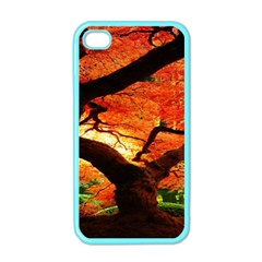 Maple Tree Nice Apple Iphone 4 Case (color) by BangZart