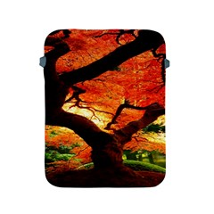 Maple Tree Nice Apple Ipad 2/3/4 Protective Soft Cases by BangZart