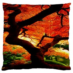 Maple Tree Nice Standard Flano Cushion Case (one Side) by BangZart