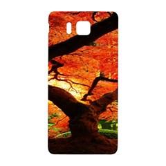 Maple Tree Nice Samsung Galaxy Alpha Hardshell Back Case by BangZart