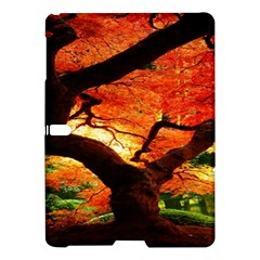 Maple Tree Nice Samsung Galaxy Tab S (10 5 ) Hardshell Case  by BangZart