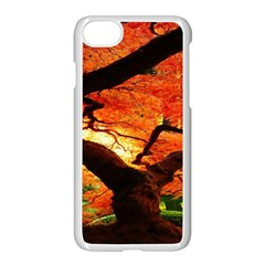 Maple Tree Nice Apple Iphone 7 Seamless Case (white) by BangZart