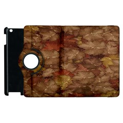 Brown Texture Apple Ipad 2 Flip 360 Case by BangZart