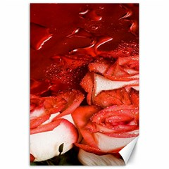 Nice Rose With Water Canvas 24  X 36