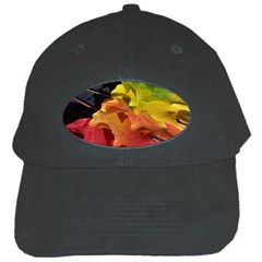 Green Yellow Red Maple Leaf Black Cap by BangZart