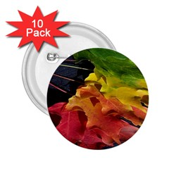 Green Yellow Red Maple Leaf 2 25  Buttons (10 Pack)  by BangZart