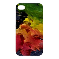 Green Yellow Red Maple Leaf Apple Iphone 4/4s Premium Hardshell Case