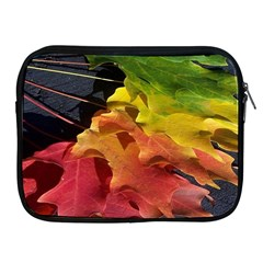 Green Yellow Red Maple Leaf Apple Ipad 2/3/4 Zipper Cases by BangZart