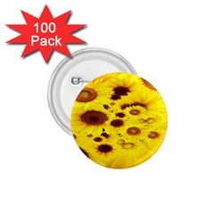 Beautiful Sunflowers 1 75  Buttons (100 Pack)