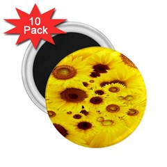 Beautiful Sunflowers 2 25  Magnets (10 Pack)