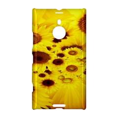 Beautiful Sunflowers Nokia Lumia 1520 by BangZart