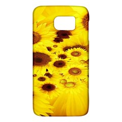 Beautiful Sunflowers Galaxy S6 by BangZart