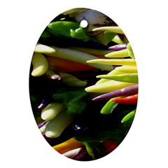 Bright Peppers Oval Ornament (two Sides) by BangZart