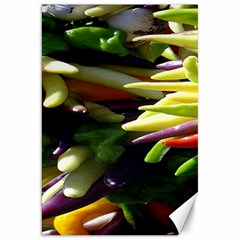 Bright Peppers Canvas 20  X 30   by BangZart
