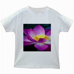 Pink Lotus Flower Kids White T Shirts by BangZart