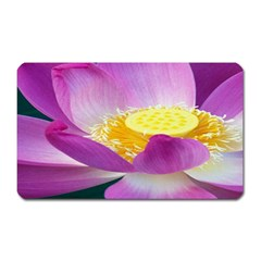 Pink Lotus Flower Magnet (rectangular)