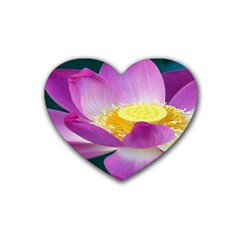 Pink Lotus Flower Heart Coaster (4 Pack)  by BangZart