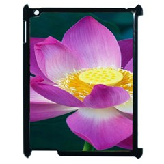 Pink Lotus Flower Apple Ipad 2 Case (black) by BangZart