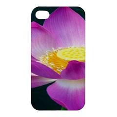 Pink Lotus Flower Apple Iphone 4/4s Premium Hardshell Case by BangZart
