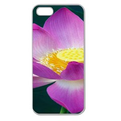Pink Lotus Flower Apple Seamless Iphone 5 Case (clear)