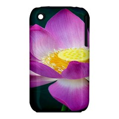 Pink Lotus Flower Iphone 3s/3gs