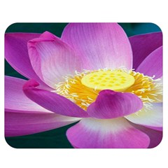 Pink Lotus Flower Double Sided Flano Blanket (medium)