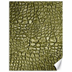 Aligator Skin Canvas 18  X 24