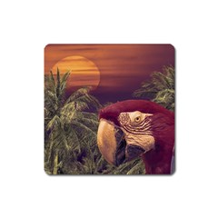 Tropical Style Collage Design Poster Square Magnet by dflcprints