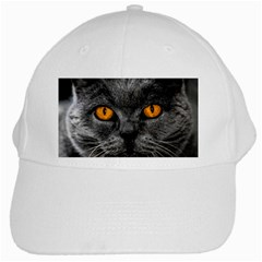 Cat Eyes Background Image Hypnosis White Cap by BangZart