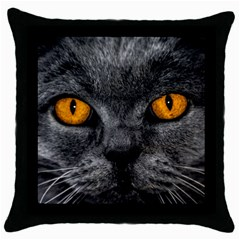 Cat Eyes Background Image Hypnosis Throw Pillow Case (black)