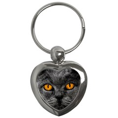 Cat Eyes Background Image Hypnosis Key Chains (heart)  by BangZart