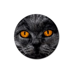 Cat Eyes Background Image Hypnosis Rubber Coaster (round)  by BangZart