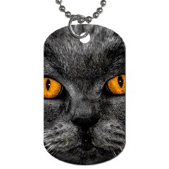 Cat Eyes Background Image Hypnosis Dog Tag (two Sides) by BangZart
