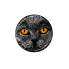 Cat Eyes Background Image Hypnosis Hat Clip Ball Marker (4 Pack) by BangZart