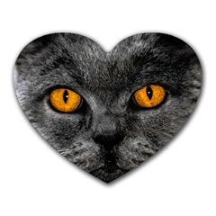 Cat Eyes Background Image Hypnosis Heart Mousepads by BangZart