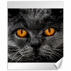 Cat Eyes Background Image Hypnosis Canvas 11  X 14   by BangZart