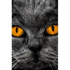 Cat Eyes Background Image Hypnosis 5 5  X 8 5  Notebooks by BangZart
