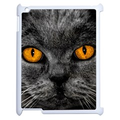 Cat Eyes Background Image Hypnosis Apple Ipad 2 Case (white) by BangZart