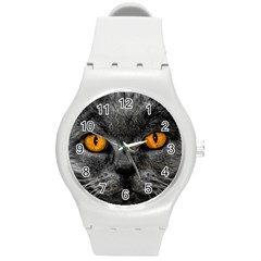 Cat Eyes Background Image Hypnosis Round Plastic Sport Watch (m) by BangZart