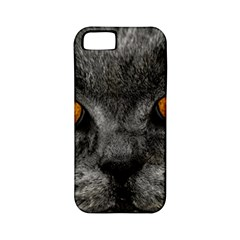 Cat Eyes Background Image Hypnosis Apple Iphone 5 Classic Hardshell Case (pc+silicone)