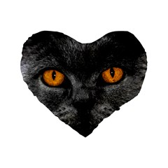 Cat Eyes Background Image Hypnosis Standard 16  Premium Heart Shape Cushions