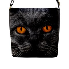 Cat Eyes Background Image Hypnosis Flap Messenger Bag (l)  by BangZart