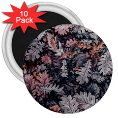 Leaf Leaves Autumn Fall Brown 3  Magnets (10 Pack)  by BangZart