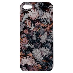 Leaf Leaves Autumn Fall Brown Apple Iphone 5 Hardshell Case by BangZart