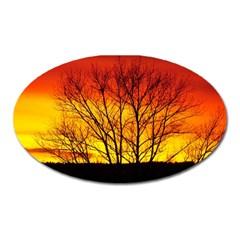 Sunset Abendstimmung Oval Magnet by BangZart