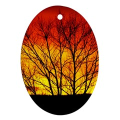 Sunset Abendstimmung Oval Ornament (two Sides) by BangZart